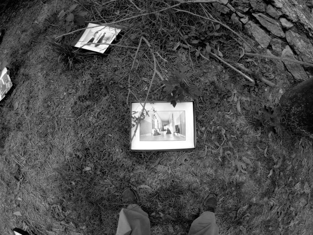 Giornata del Contemporaneo_Arte nella Macchia (4/6)